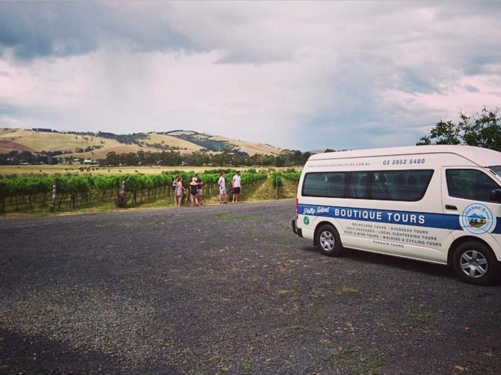 diannes-venture-tours
